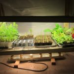Small Heat Lamp For Plants