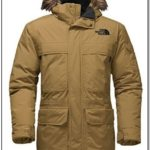 Warmest Winter Jacket Mens